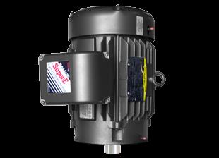 MVB-T Motors for Vertical Water Pumps